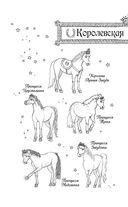 Секрет для пони — фото, картинка — 6