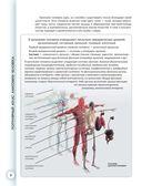 Популярный атлас анатомии человека — фото, картинка — 6