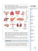 Популярный атлас анатомии человека — фото, картинка — 7