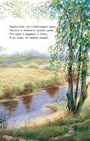 Две радуги. Стихи о природе — фото, картинка — 8