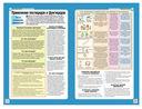 Здоровый сад. Иллюстрированное руководство по борьбе с вредителями и болезнями — фото, картинка — 4