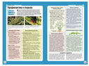 Здоровый сад. Иллюстрированное руководство по борьбе с вредителями и болезнями — фото, картинка — 2