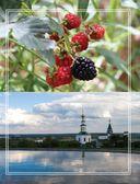 Праздник по рецепту. Ваши любимые блюда от поваров Золотого Кольца России — фото, картинка — 9