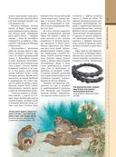 Кельтские мифы и легенды — фото, картинка — 6