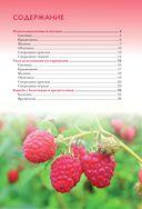 Полезные ягоды. Секреты сверхурожая — фото, картинка — 2