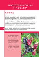 Полезные ягоды. Секреты сверхурожая — фото, картинка — 3
