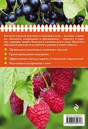 Полезные ягоды. Секреты сверхурожая — фото, картинка — 5