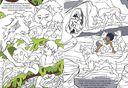 Книга джунглей. Читай и раскрашивай — фото, картинка — 1