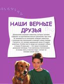 Домашние животные — фото, картинка — 5