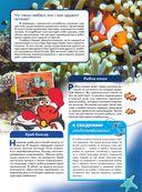 Жизнь океана — фото, картинка — 11