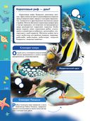 Жизнь океана — фото, картинка — 14