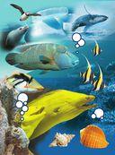 Жизнь океана — фото, картинка — 2