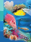 Жизнь океана — фото, картинка — 4