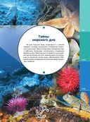 Жизнь океана — фото, картинка — 5
