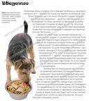 Фитнес с собакой. Практическое руководство для собак и их хозяев — фото, картинка — 1
