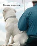 Фитнес с собакой. Практическое руководство для собак и их хозяев — фото, картинка — 3