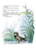 Книга сказок В.Сутеева — фото, картинка — 11