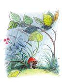 Книга сказок В.Сутеева — фото, картинка — 6