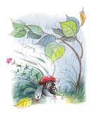 Книга сказок В.Сутеева — фото, картинка — 8