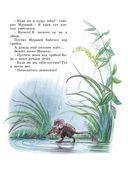 Книга сказок В.Сутеева — фото, картинка — 9
