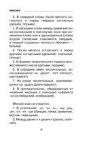 Все правила русского языка с приложениями — фото, картинка — 15