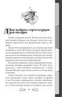 Капризный огурец. Как вырастить без ошибок? 50 шагов к успеху — фото, картинка — 3
