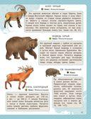 Атлас животных для малышей — фото, картинка — 11
