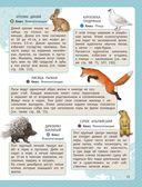 Атлас животных для малышей — фото, картинка — 13