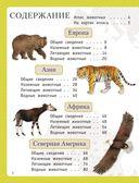 Атлас животных для малышей — фото, картинка — 2