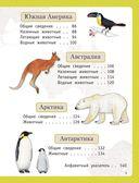 Атлас животных для малышей — фото, картинка — 3