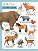 Атлас животных для малышей — фото, картинка — 8