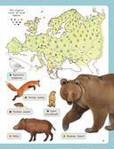 Атлас животных для малышей — фото, картинка — 9