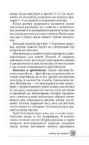 Все секреты урожая на шести сотках для разумных дачников от Галины Кизимы — фото, картинка — 14