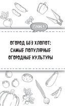 Все секреты урожая на шести сотках для разумных дачников от Галины Кизимы — фото, картинка — 4