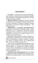 Все секреты урожая на шести сотках для разумных дачников от Галины Кизимы — фото, картинка — 5