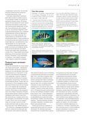 Рыбы рек и озер. Всемирная иллюстрированная энциклопедия — фото, картинка — 10