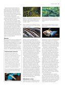Рыбы рек и озер. Всемирная иллюстрированная энциклопедия — фото, картинка — 12