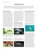Рыбы рек и озер. Всемирная иллюстрированная энциклопедия — фото, картинка — 13