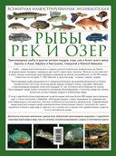 Рыбы рек и озер. Всемирная иллюстрированная энциклопедия — фото, картинка — 16