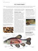 Рыбы рек и озер. Всемирная иллюстрированная энциклопедия — фото, картинка — 7