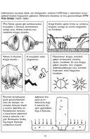 Химия. Естественная наука в комиксах — фото, картинка — 9