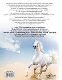 Лошади. Большая энциклопедия — фото, картинка — 16