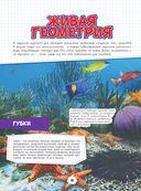 Подводный мир — фото, картинка — 10