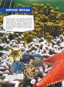 Подводный мир — фото, картинка — 14