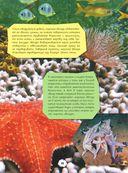 Подводный мир — фото, картинка — 15