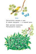Разноцветные страницы — фото, картинка — 8