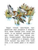 Лягушка-путешественница и другие сказки о животных — фото, картинка — 6