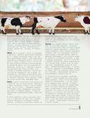 Идеальная говядина. Поистине королевское мясо — фото, картинка — 11