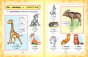 Итальянско-русский визуальный словарь для детей — фото, картинка — 3