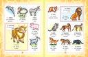 Итальянско-русский визуальный словарь для детей — фото, картинка — 5